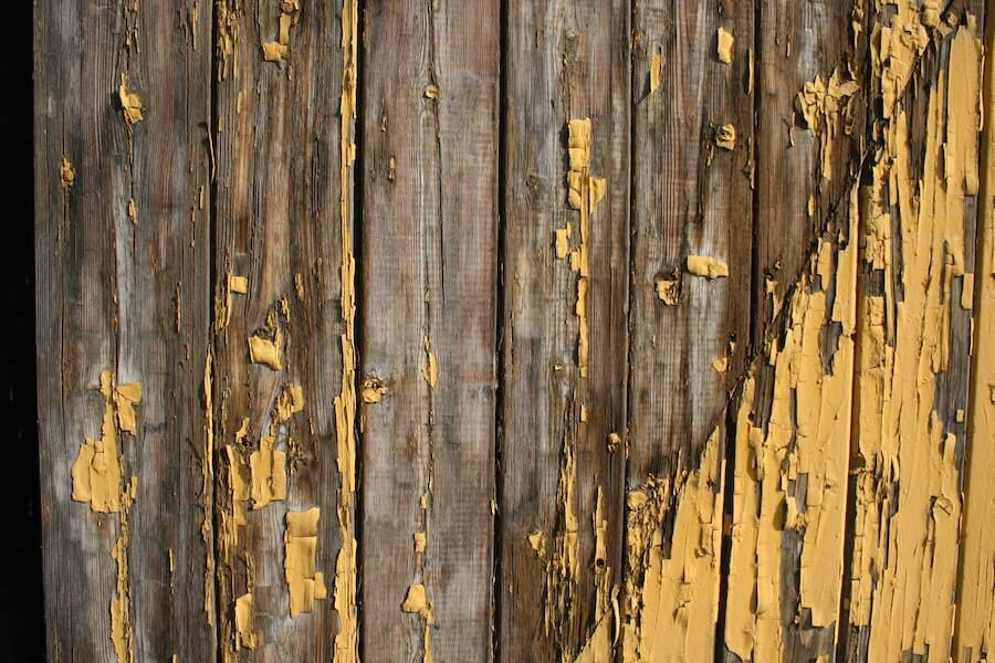 How to care for your natural fence
